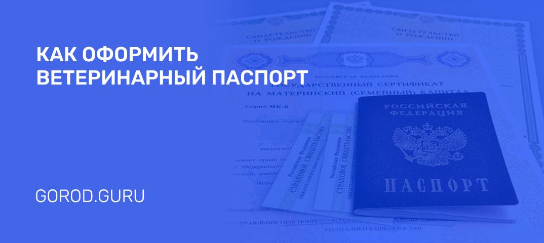 Как и где оформить ветеринарный паспорт